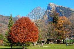 Samoens in Autumn